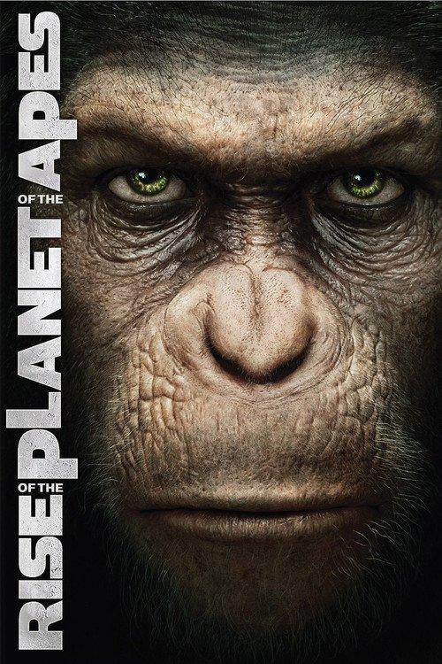ape prostitute