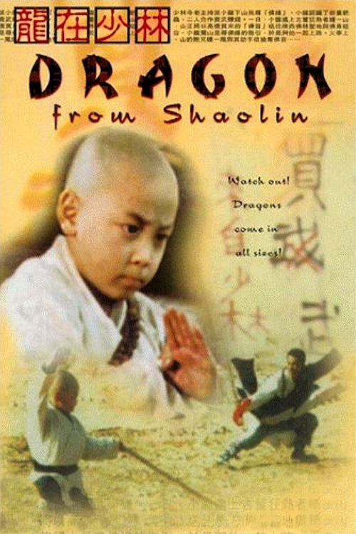 دانلود فیلم martial arts of shaolin 1986